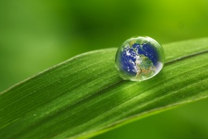 """rain drop on a leaf reflecting earth concept for environmental conservation """"Elements of earth image courtesy NASA""""/http://www.killerasteroids.org/"""