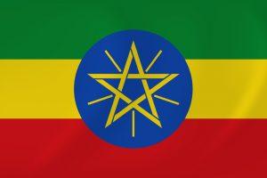 Students Enjoy Ethiopian Cuisine
