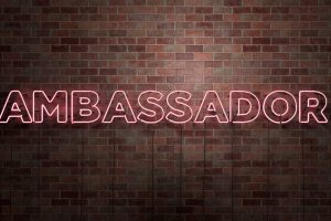 Honors Ambassador Applications Now Available!